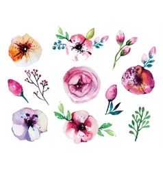 Watercolor hand drawn floral set vector