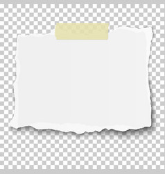 ragged piece of white paper on sticky adhesive vector image