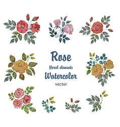 Watercolor Set with Roses Branches for Deco vector image