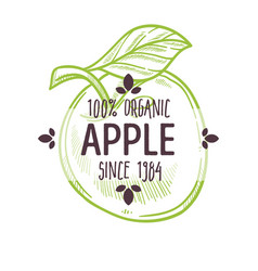 100 percent organic apple label with whole ripe vector