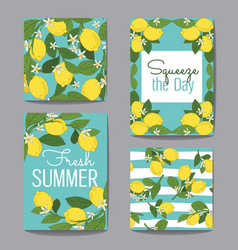 citrus fruits greeting cards and patterns vector image