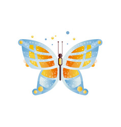 gorgeous butterfly with blue and orange wings vector image