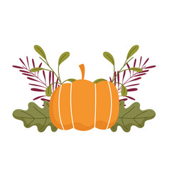 happy thanksgiving day pumpkin leaf foliage vector image