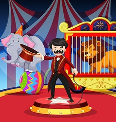 Ring master with animal show at circus vector image