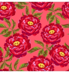 Seamless pattern with peony flowers Bright buds vector