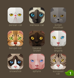 animal faces for app icons-cats set vector image