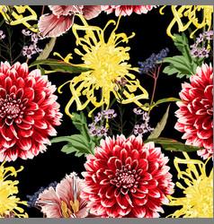 autumn dahlia chrysanthemum flowers vector image