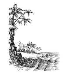 Beach and sea view palm trees on shore vector
