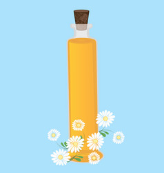 chamomile essential oil aromatherapy vector image