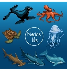 collection marine animals vector image