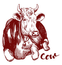 Cow - domestic animal farm hand drawn vector
