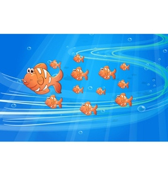 Fishes vector image vector image
