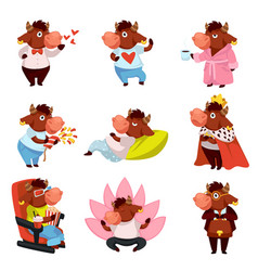 Funny bull character emotional animal ox mascot vector