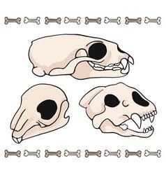 mammal skull cartoon motif set vector image