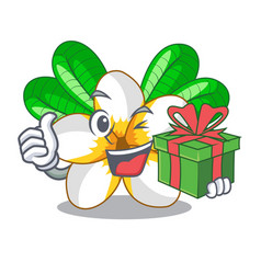 With gift frangipani flower in the cartoon tree vector