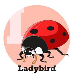 Abc cartoon ladybird vector
