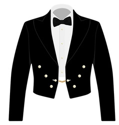 Black suit with bow tie vector image