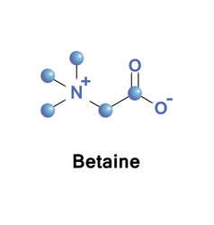 betaine neutral chemical compound vector image