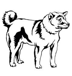 Decorative standing portrait of dog shiba inu vector