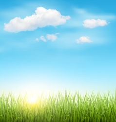Green Grass Lawn with Clouds and Sun on Blue Sky vector image