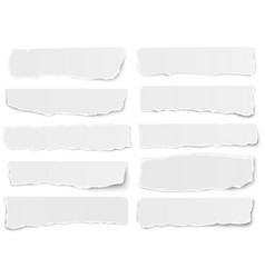 Set elongated torn paper fragments isolated vector