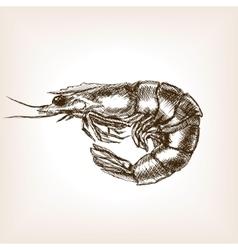 Shrimp hand drawn sketch style vector image