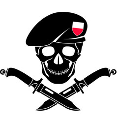sign of special forces of poland vector image