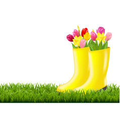 gumboot with green grass and tulips vector image