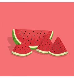 Watermelon Fruit Slice Bite vector image vector image