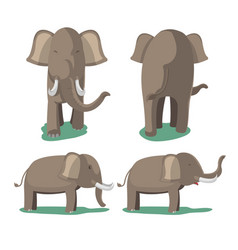 elephant animal character isolate set vector image vector image