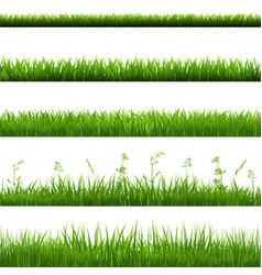 Grass borders big set vector