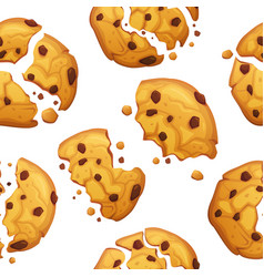 oatmeal cookie with chocolate crumbs pattern vector image
