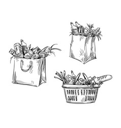 shopping bags and basket drawing vector image
