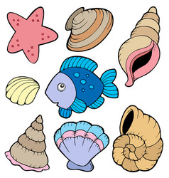 Various shells and fish collection vector