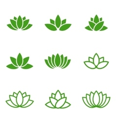 green lotus icons set on white background vector image