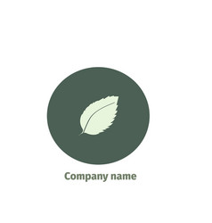 mint logo for company isolated mint leaves on vector image