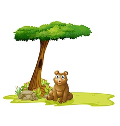 A tree with a hollow at the back of a bear vector
