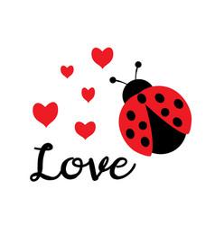 love bug vector image