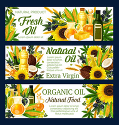 Natural sunflower and olive cooking oils vector