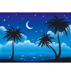 night coast vector image