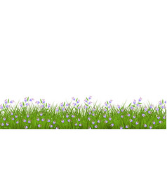 Spring or summer floral border with blue wild vector