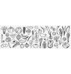 Vegetables hand drawn doodle set vector