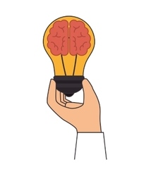 Bulb light brain education icon vector
