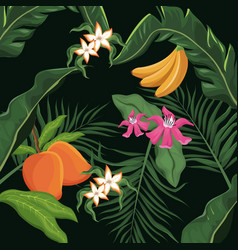 tropical fruits and flowers leaves palm wallpaper vector image vector image