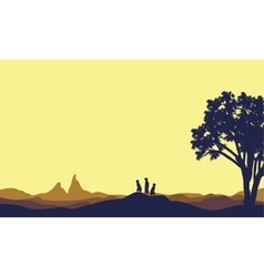 Meerkat at afternoon landscape silhouette vector image vector image