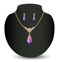 a golden necklace and earrings female with white vector image