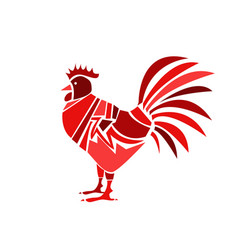 red rooster on white background vector image vector image