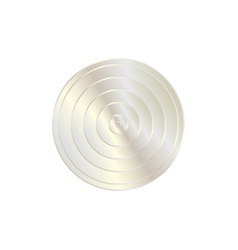 silver concentric circle vector image
