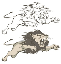 invincible lion vector image