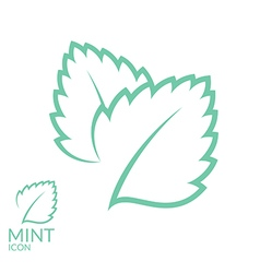 Mint Icon set Isolated leaves on white vector image